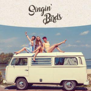 Singin' Birds [koncert] @ Sala teatralna Świdnickiego Ośrodka Kultury | Świdnica | Województwo dolnośląskie | Polska