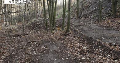 Wracam do sprawy dewastacji lasu na Pełcznicy w Świebodzicach