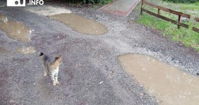 """""""Deszczowa piosenka"""", mieszkańcy się skarżą…"""