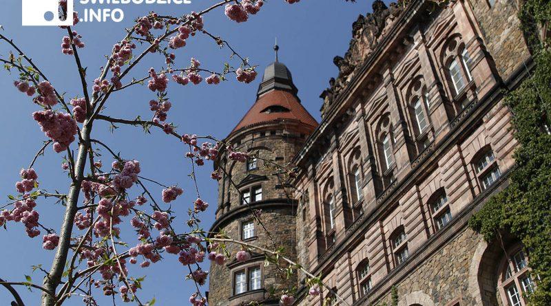Wiosna zagląda do zamku Książ koło Świebodzic